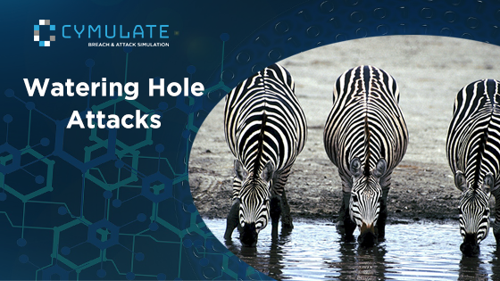 Watering Hole Attack: