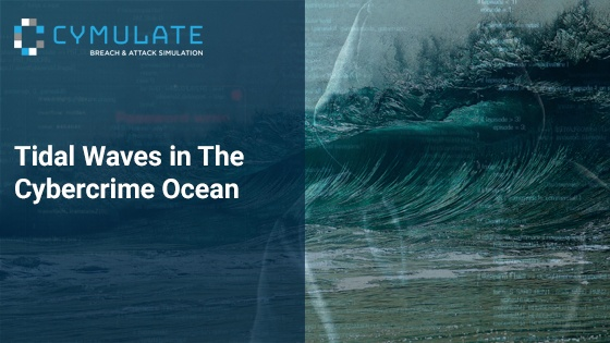 Tidal Waves in The Cybercrime Ocean