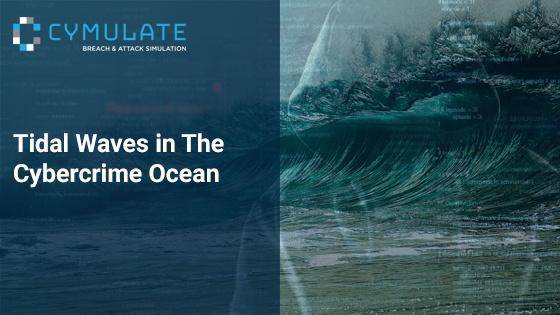 Tidal Waves in The Cybercrime Ocean
